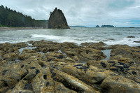 Rialto Beach Tide Pools and Surf, Olympic National Park, Washington