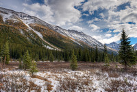 Valley Meadow, Consolation Lakes Trail, Banff National Park, Alberta