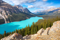 Peyto Lake from Bow Summit, Banff National Park, Alberta