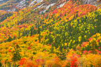 Notch Color from Willey Pond, Crawford Notch State Park, New Hampshire