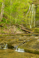 Waterfall, Sweedler Preserve, Tompkins County, New York