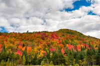 Fall Color, Essex County, Vermont