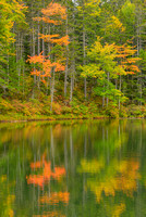 Falls Pond Reflections, Kancamagus Highway, White Mountain National Forest, New Hampshire